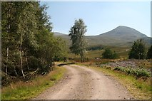 NN3578 : Road into the Euro Forest north of Fersit by Chris