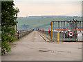 NH7269 : View Along Saltburn Pier by David Dixon