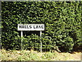 TL9566 : Halls Lane sign by Adrian Cable