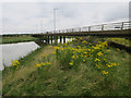 TQ7686 : A130 bridge, Canvey Island by Hugh Venables