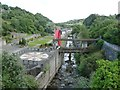 SC4384 : River Laxey in Laxey village by Christine Johnstone