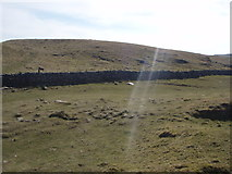 SD8965 : Malham Beck dry valley by Johnny Coop