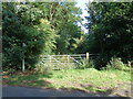 SO9556 : Overgrown bridleway from Huddington Hill by Jeff Gogarty