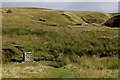 NY8804 : Pennine Way crossing Lad Gill by Chris Heaton