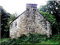H2875 : Ruined dwelling, Willmount (gable view) by Kenneth  Allen