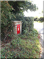 TM1191 : Ash Lane Victorian Postbox by Adrian Cable