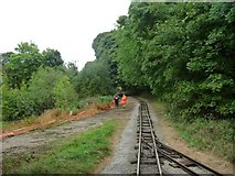 SK2855 : Shorter branch, Steeple Grange Light Railway by Christine Johnstone