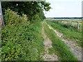 TF6708 : Mill Drove near Shouldham by Richard Humphrey