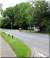 SU2901 : Bull passes Woodpeckers Care Home, Brockenhurst  by Jaggery