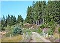 NH5433 : Gate into Abriachan Forest by Jim Barton