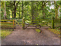 SK4563 : Path and Gate in Hardwick Park by David Dixon