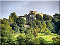 SK4663 : The Ruins of Hardwick Old Hall by David Dixon
