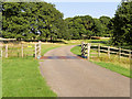 SK4664 : Cattle Grid on Driveway to Hardwick Hall by David Dixon