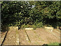 SJ6042 : Graves in a churchyard by Garry Lavender-Rimmer