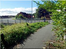 NS3977 : Cycle path at Renton by Lairich Rig