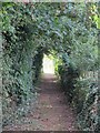 TL2839 : Footpath by Redlands Farm Cottages by Mike Quinn