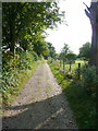 TL1922 : The Chiltern Way southwards from the entrance to the churchyard, St Paul's Walden by Humphrey Bolton