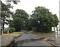 TL8765 : The Avenue, Great Barton by Adrian Cable