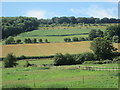 SU7787 : View west near to Pheasant's Hill by Peter S