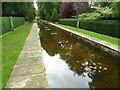 SU2496 : Peto Water Garden, Buscot Park by Philip Halling