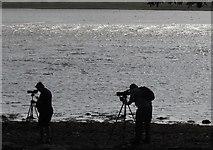 SX9687 : Birdwatchers at Riversmeet by Derek Harper