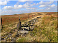 SD9912 : Ruined wall, fence and tower of stones, Rape Hill by Mick Garratt