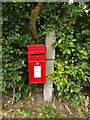 TL9769 : Stock Hill Postbox by Adrian Cable
