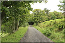 NX1896 : Hill Path to Barr by Billy McCrorie