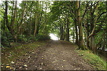 NX1896 : Path to Radio Mast on Wood Hill by Billy McCrorie