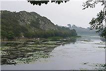 SR9794 : Bosherton Lily Ponds by Alan Hunt