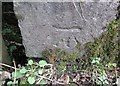 SN2830 : Ordnance Survey Cut Mark by Adrian Dust