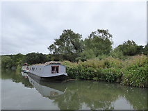 SP4508 : Narrowboats moored near the edge of Wytham Great Wood by Vieve Forward