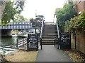 TG2308 : Riverside walk [1] by Michael Dibb