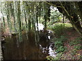 TL9271 : The Black Bourn River off Thetford Road by Adrian Cable
