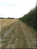 TR3156 : Footpath to Foxborough Hill by Hugh Craddock