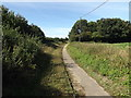 TM1578 : Footpath off Bungay Road by Adrian Cable