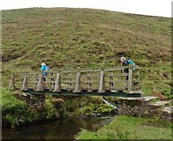 SS7438 : Footbridge at Cornham Ford by Roger Cornfoot