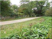 TQ1913 : Footpath by Upper Wyckham Farm by Shazz