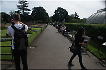 TQ1876 : View along the path by Palm House by Robert Lamb