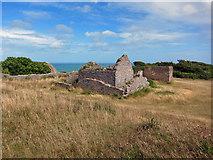SX9456 : Ruin on Berry Head by Richard Dorrell