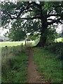 SP9235 : Close to Aspley Heath by Dave Thompson