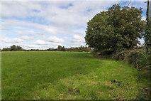 R7582 : Field inside a sharp bend by David P Howard