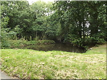 TM1587 : Pond off Rectory Road by Adrian Cable