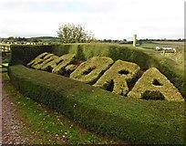 ST0007 : Topiary at Kia-Ora by Roger Cornfoot