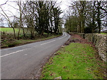 SO8700 : Woefuldane Bottom near Minchinhampton by Jaggery