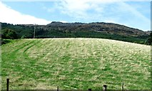 J1812 : Rough grazing above the R174 at Carlingford's North Commons by Eric Jones