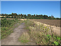 TL3802 : Disused access track off the B194 by Stephen Craven