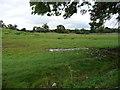 SE0986 : Soggy farmland, Mill Hill by Christine Johnstone