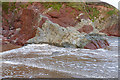 SS0298 : Old Red Sandstone, Freshwater East by Alan Hunt