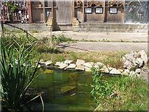 TQ3280 : Cross Bones Garden - pond by Stephen Craven